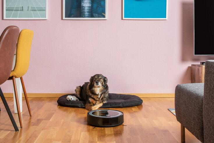 TECHNIMAX SR1 entfernt Hundehaare. Saugroboter saugt Tierhaare auf dem Boden. 10 Gründe für einen Saugroboter.